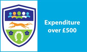 Expenditure over £500
